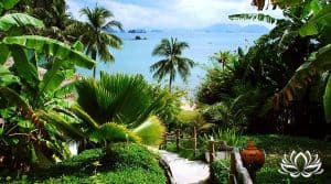 titre de propriété en Thaïlande, acheter du terrain en Thaïlande, bail de 30 ans en Thaïlande, chanote, nor sor sam, cadastre