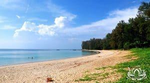 L'ouverture de Phuket dès octobre 2020, coup de gueule