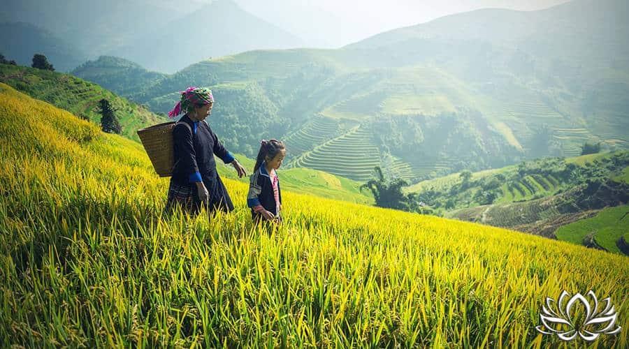 Thaïlande les montagnes du nord