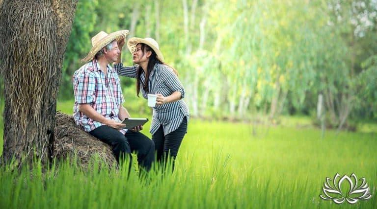 Read more about the article Location de terrain agricole