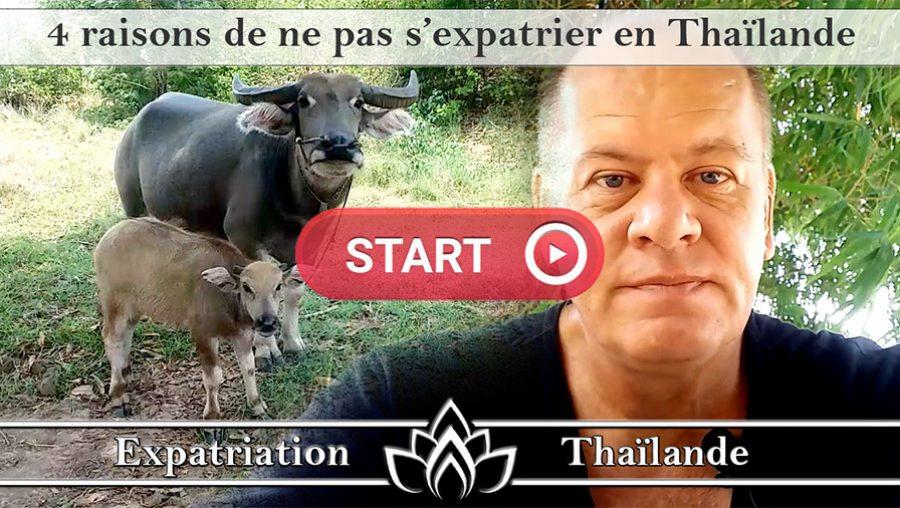pourquoi ne pas s'expatrier en Thaïlande, au secours la Thaïlande, Thaïlande le rêve qui tourne au cauchemar
